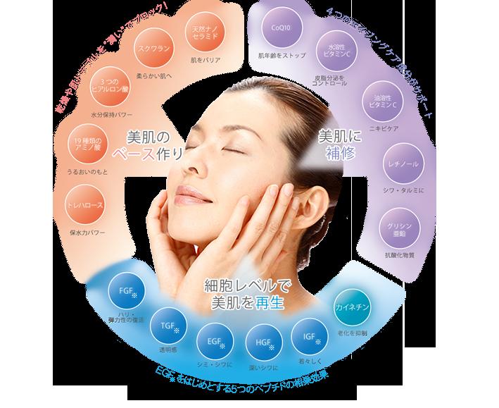 「美肌に補修」 CoQ10 水溶性ビタミンC 油溶性ビタミンC レチノール グリシン亜鉛 「細胞レベルで美肌を再生」 FGF TGF EGF HGF IGF カイネチン 「美肌のベースづくり」 トレハロース 19種類の網の酸 3つのヒアルロン酸 スクワラン 天然ナノセラミド [イメージ図]  | 天然ナノセラミドやEGFを配合した化粧品モイストゲルプラス