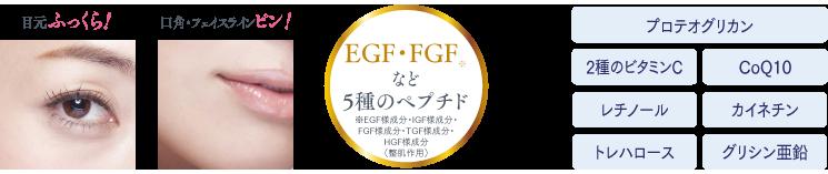 目元ふっくら! 口角・フェイスラインピン! EGF・FGFなど5種のペプチド ※EGF様成分・IGF様成分・FGF様成分・TGF様成分・HGF様成分(整肌作用) CoQ10(コエンザイムQ10)2種のビタミンC レチノール カイネチン トレハロース グリシン亜鉛